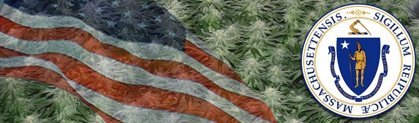 Buy Medical Marijuana Seeds In Massachusetts