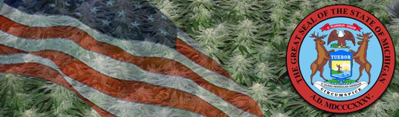 Buy Medical Marijuana Seeds In Michigan