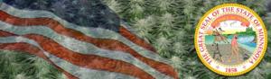 Buy Medical Marijuana Seeds In Minnesota