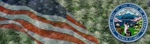 Buy Medical Marijuana Seeds In Nebraska