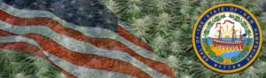 Buy Medical Marijuana Seeds In New Hampshire