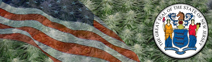 Buy Medical Autoflower Seeds In New Jersey