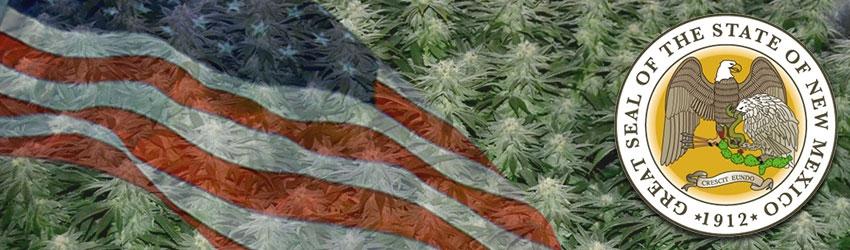 Buy Medical Marijuana Seeds In New Mexico