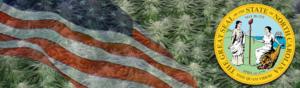 Buy Medical Marijuana Seeds In North Carolina