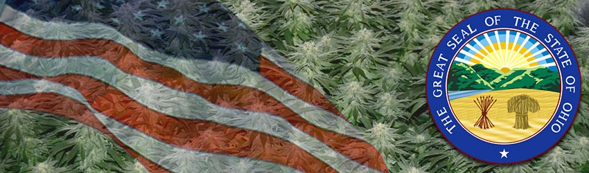 Buy Medical Marijuana Seeds In Ohio