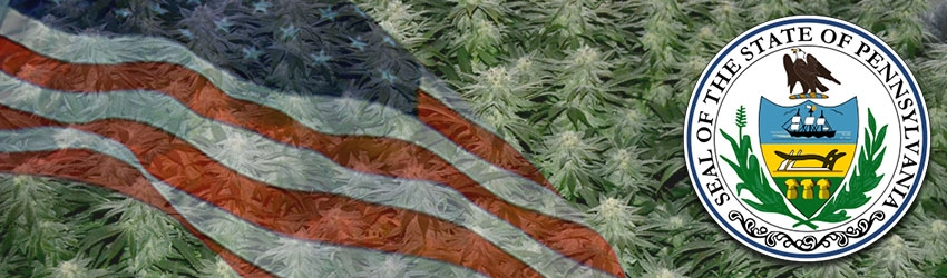 Buy Medical Marijuana Seeds In Pennsylvania