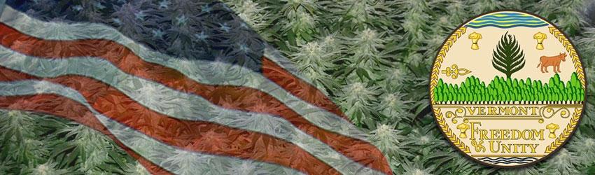 Buy Medical Marijuana Seeds In Vermont