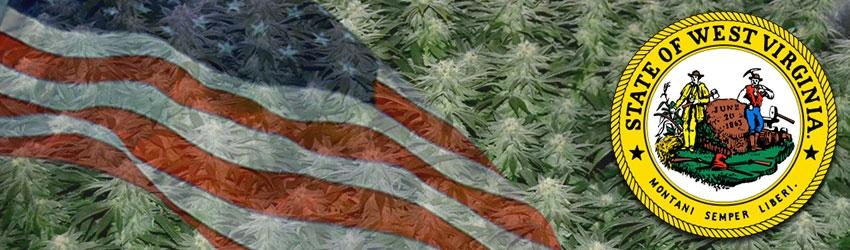 Buy Medical Marijuana Seeds In West Virginia
