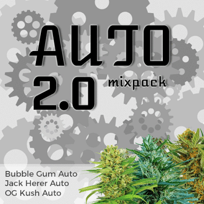 Autoflower 2.0 Mixpack Marijuana Seeds
