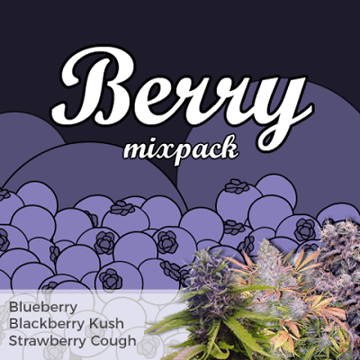 Berry Mixpack Marijuana Seeds