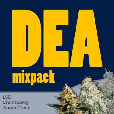 DEA Mixpack Marijuana Seeds