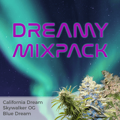 Dreamy Mixpack Marijuana Seeds