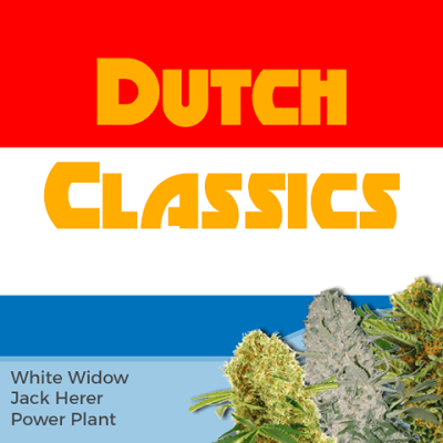 Dutch Classics Mixpack Marijuana Seeds