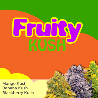 Fruity Kush Mixpack Marijuana Seeds