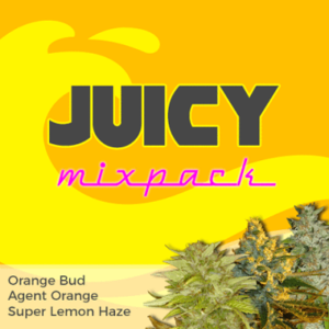 Juicy Mixpack Marijuana Seeds