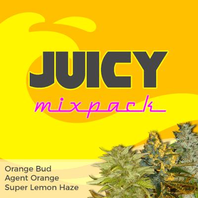 Juicy Mixpack Marijuana Seeds