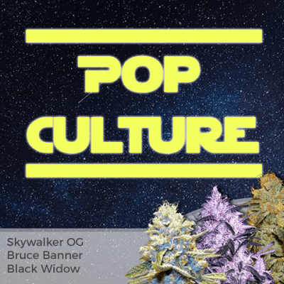 Pop Culture Mixpack Marijuana Seeds