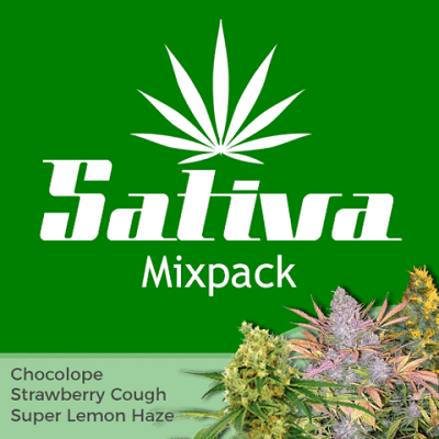 Sativa Mixpack Marijuana Seeds
