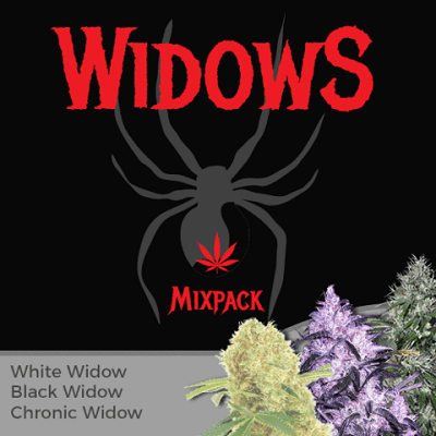 Widow Mixpack Marijuana Seeds