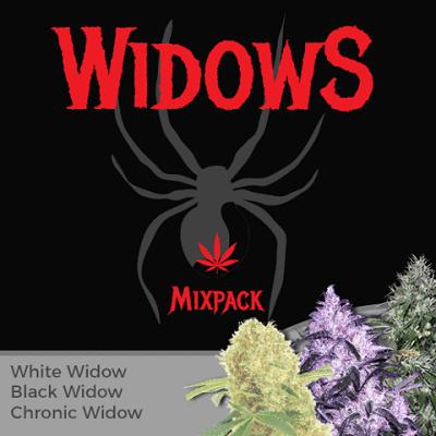 Widow Mixpack Marijuana Seeds