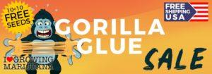 Gorilla Glue Seeds Offer