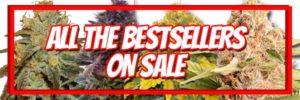 420 Free Marijuana Seeds - Buy 10 Get 10 Free