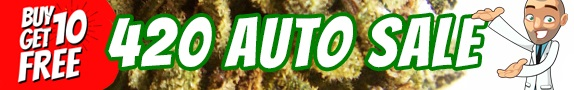 420 Offer - Buy 10 Autoflower Seeds Get 10 Free