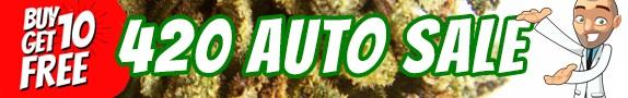 420 Offer - Buy 10 Autoflower Seeds Get 10 Free