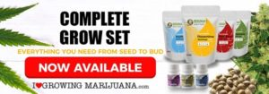 Marijuana Seeds Grow Set Sale