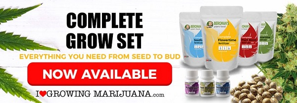 Marijuana Seeds Grow Set Sale