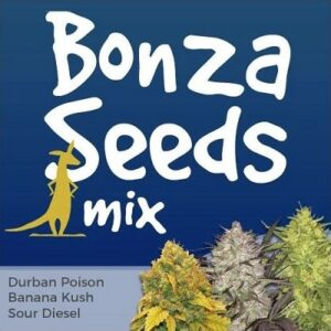 Bonza Marijuana Seeds Mix
