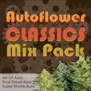 Classic Autoflower Seeds Mix