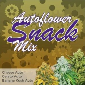 Snack Autoflower Seeds Mix