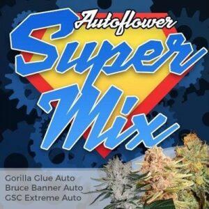 Super Autoflower Seeds Mix
