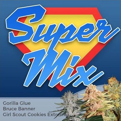 Super Mixpack Marijuana Seeds