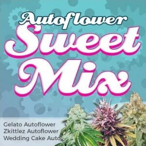 Sweet Autoflower Seeds Mix
