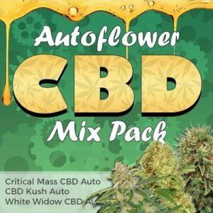 CBD Autoflower Seeds Mix
