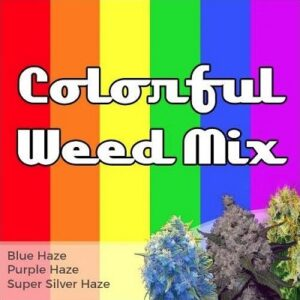 Colorful Weed Mixed Marijuana Seeds