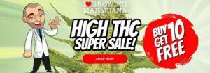 Free High THC Cannabis Seeds Sale