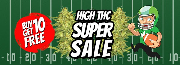 Free High THC Marijuana Seeds In The Super Bowl Sale
